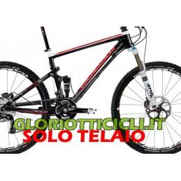 TELAIO CARBON  NINETY NINE 3000 2012